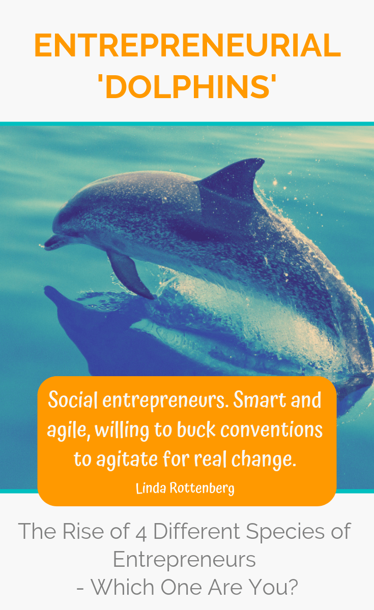 Entrepreneurs who are driven to create social change through their enterprises are the new entrepreneurial 'dolphins', often working in the not-for-profit or public sectors, advocating for real change. Which species of entrepreneur do you belong to? #entrepreneur #entrepreneurship #ladyboss #ladybosses #womeninbusiness #liveyourpassion #followyourheart #liveyourdream #passion #solopreneur #entrepreneurlife #entrepreneurial #entrepreneurmindset #success #successmindset #ladybosslife #worksmarter #changemakers #heartcentered #heartcentred #worksmarternotharder #laptoplifestyle