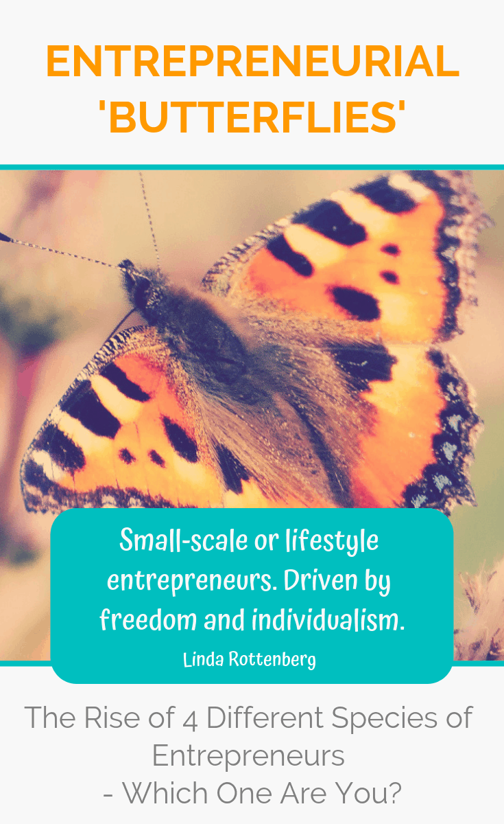 Driven by freedom and individualism, entrepreneurial 'butterflies' are rapidly transforming the face of entrepreneurship and changing the world for the better. Which entrepreneurial species do you belong to? #entrepreneur #entrepreneurship #ladyboss #ladybosses #womeninbusiness #liveyourpassion #followyourheart #liveyourdream #passion #solopreneur #entrepreneurlife #entrepreneurial #entrepreneurmindset #success #successmindset #ladybosslife #worksmarter #changemakers #heartcentered #heartcentred #worksmarternotharder #laptoplifestyle
