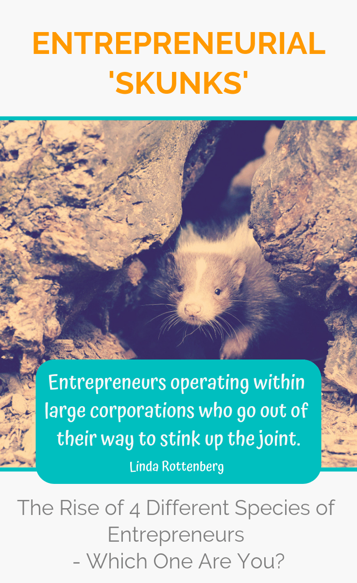 These special creatures are changing the way we do business and transforming corporations from the inside out. Which entrepreneurial species do you belong to? Read on the find out! #entrepreneur #entrepreneurship #ladyboss #ladybosses #womeninbusiness #liveyourpassion #followyourheart #liveyourdream #passion #solopreneur #entrepreneurlife #entrepreneurial #entrepreneurmindset #success #successmindset #ladybosslife #worksmarter #changemakers #heartcentered #heartcentred #worksmarternotharder #laptoplifestyle