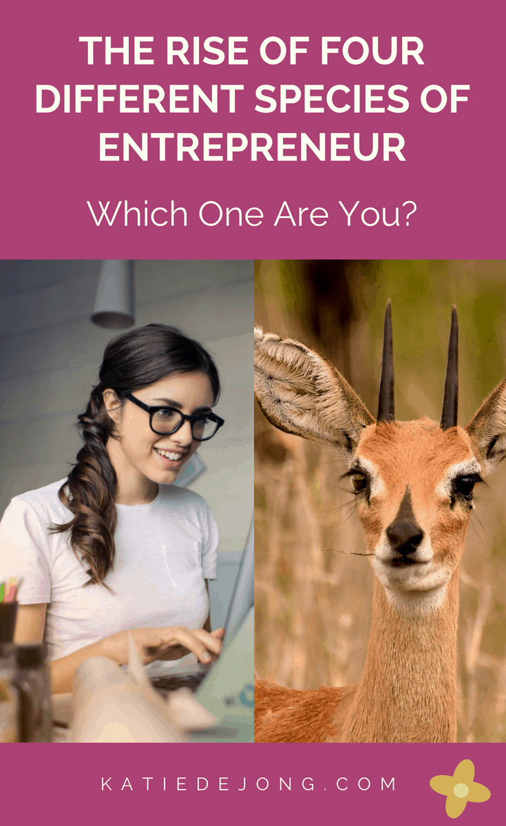 Find out about the emergence of four different species of entrepreneurs in today's changing professional landscape - and which category you fit into! #entrepreneur #entrepreneurship #ladyboss #girlboss #freelancing #freelancer #liveyourpassion #followyourheart #liveyourdream #passion #solopreneur #workfromhome #laptoplifestyle
