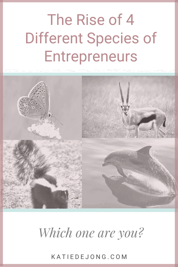 Find out about the emergence of four different species of entrepreneurs in today's changing professional landscape - and discover which category you fit into! #fempire #fempirecoach #entrepreneur #entrepreneurship #ladyboss #womeninbusiness #businesswoman #businesscoach #solopreneur #entrepreneurlife #success #successmindset #workfromhome #mompreneur #mumpreneur #laptoplifestyle #leadership