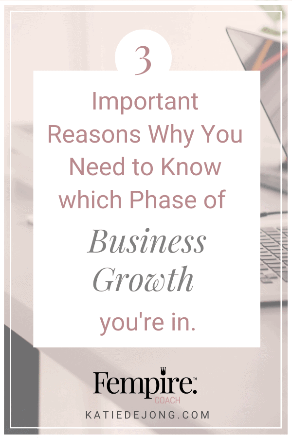Do you know where you are in the business growth cycle? If not, you're flying blind. There are certain critical activities you need to undertake in each phase in order to generate profit in the fastest possible manner. Read on to discover what they are! #fempire #fempirecoach #goals #goalsetting #entrepreneur #entrepreneurship #ladyboss #womeninbusiness #businesscoach #solopreneur #entrepreneurlife #entrepreneurmindset #successmindset #worksmarternotharder #laptoplifestyle #mompreneur #workfromhome
